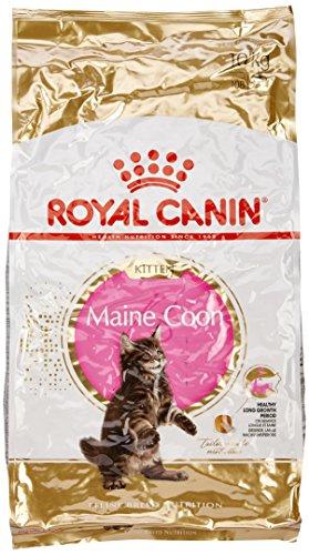 ►► Royal Canin Main Coon : Coupon de réduction ▻▻ – 64 %