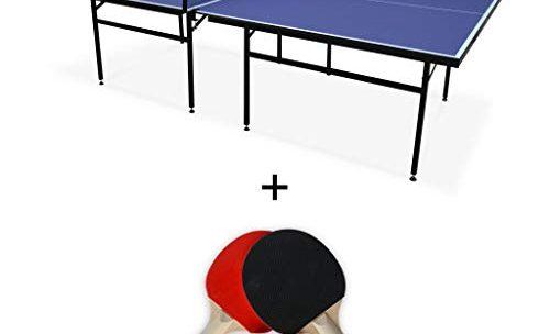 Raquette De Ping Pong Pas Cher : Bon Plan  – 31 %