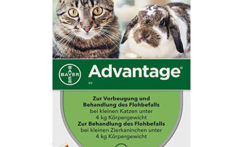 >>> Pipette Advantage : En promotion ►◄ – 27 %