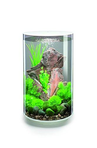 Aquarium Tube les meilleurs avis Bon plan -29 % cliquez VITE pour en savoir plus…